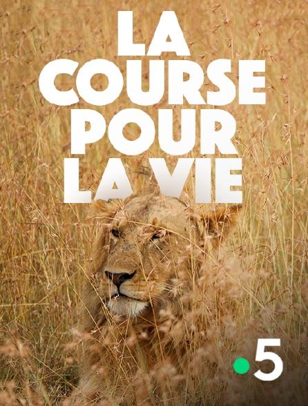 France 5 - La course pour la vie