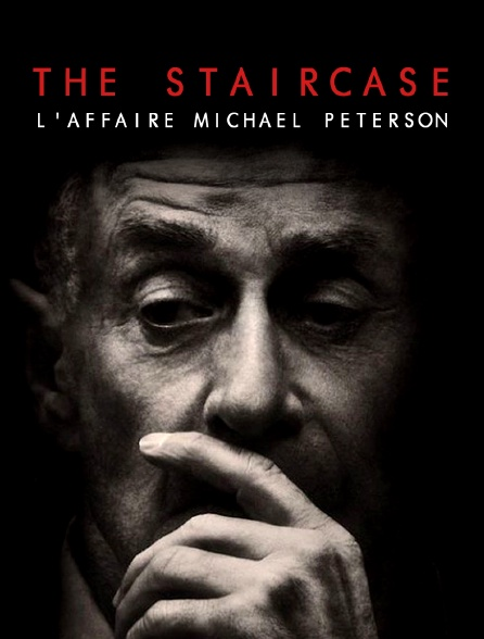 The Staircase : l'affaire Michael Peterson