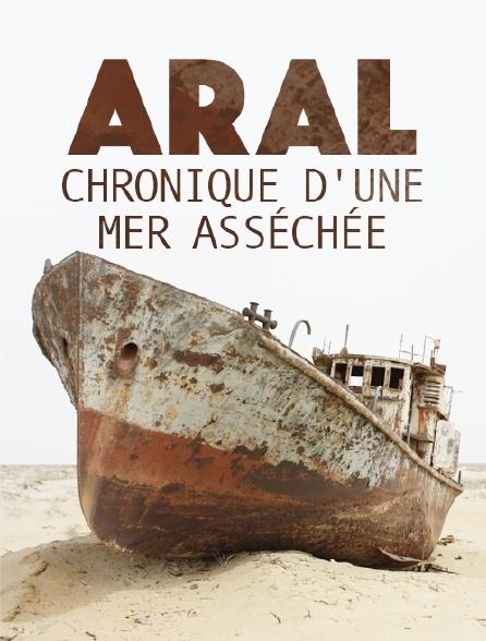 Aral, chronique d'une mer asséchée