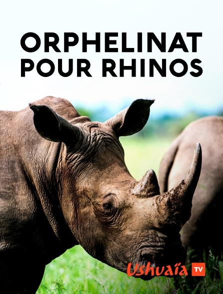 Ushuaïa TV - Orphelinat pour rhinos