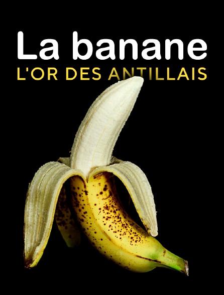 La banane, l'or des Antillais