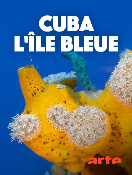 Arte - Cuba, l'île bleue