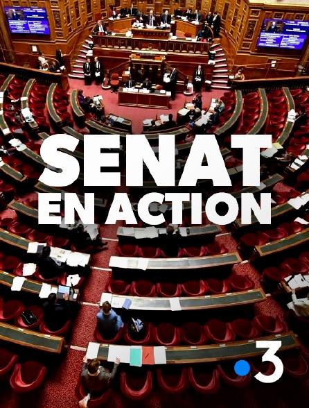 France 3 - Sénat en action