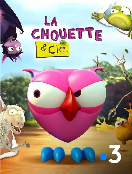 France 3 - La chouette & Cie