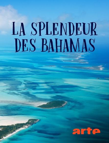 Arte - La splendeur des Bahamas