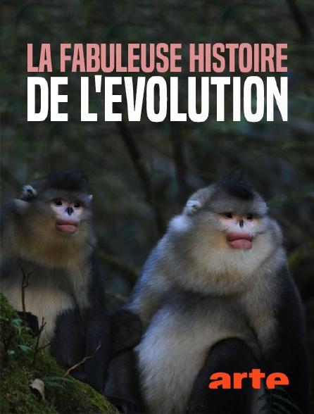Arte - La fabuleuse histoire de l'évolution