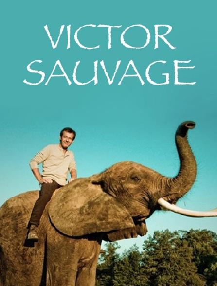 Victor Sauvage