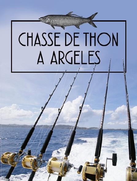 Chasse de thon à Argelès