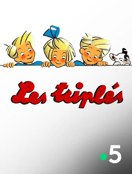 France 5 - Les triplés
