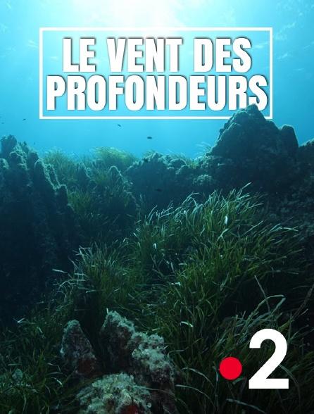 France 2 - Le vent des profondeurs