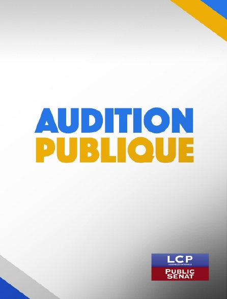 LCP Public Sénat - Audition publique