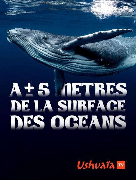 Ushuaïa TV - A + ou - 5 mètres de la surface des océans *2015