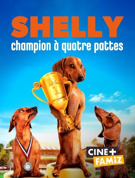 Ciné+ Famiz - Shelly, champion à quatre pattes