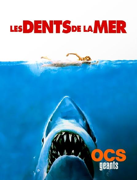 OCS Géants - Les dents de la mer