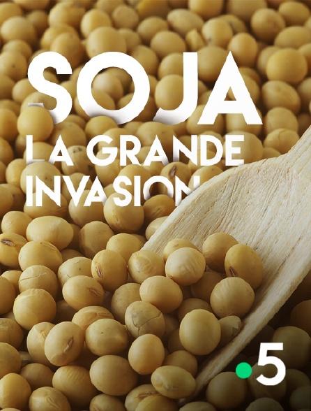 France 5 - Soja, la grande invasion