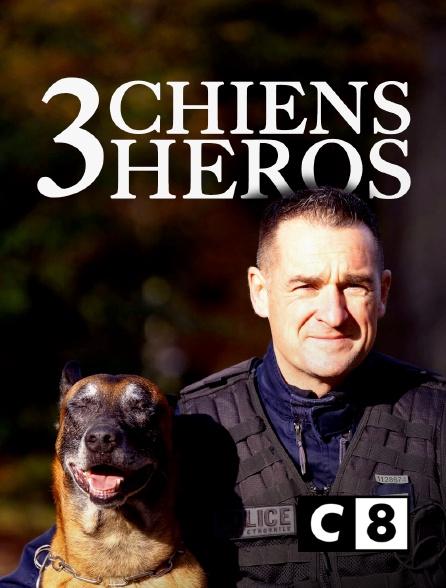 C8 - 3 chiens héros