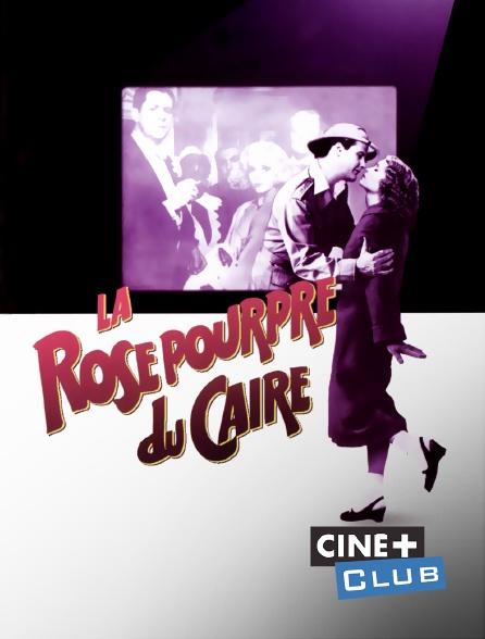 Ciné+ Club - La rose pourpre du Caire