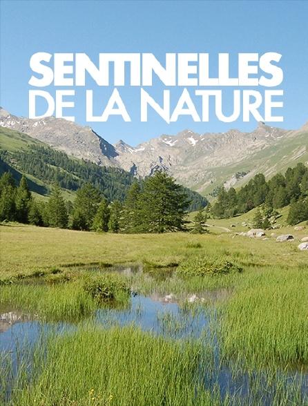 Sentinelles de la nature