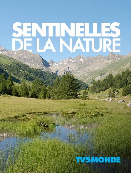 TV5MONDE - Sentinelles de la nature