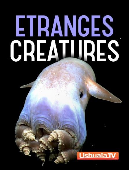 Ushuaïa TV - Etranges créatures