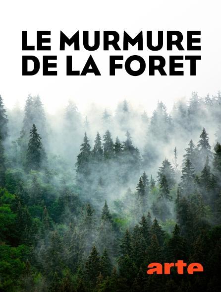 Arte - Le murmure de la forêt