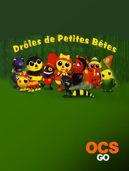 OCS Go - Drôles de petites bêtes