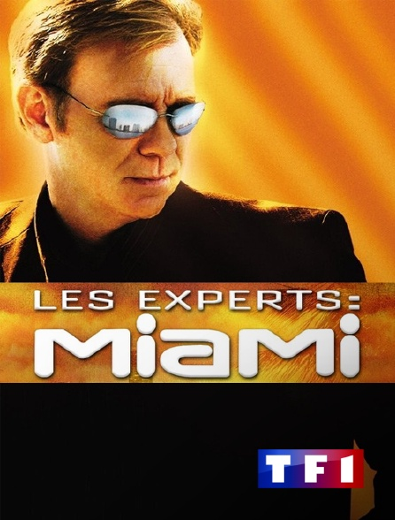 TF1 - Les experts : Miami