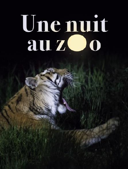 Une nuit au zoo