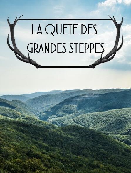 La quête des grandes steppes