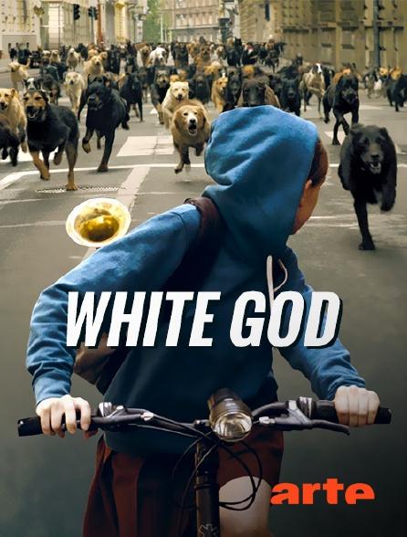 Arte - White God