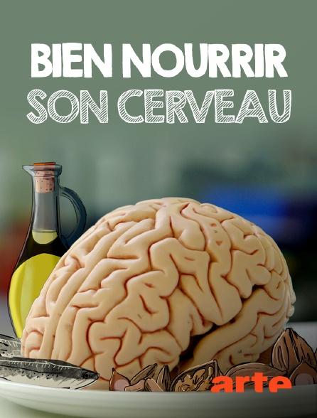 Arte - Bien nourrir son cerveau