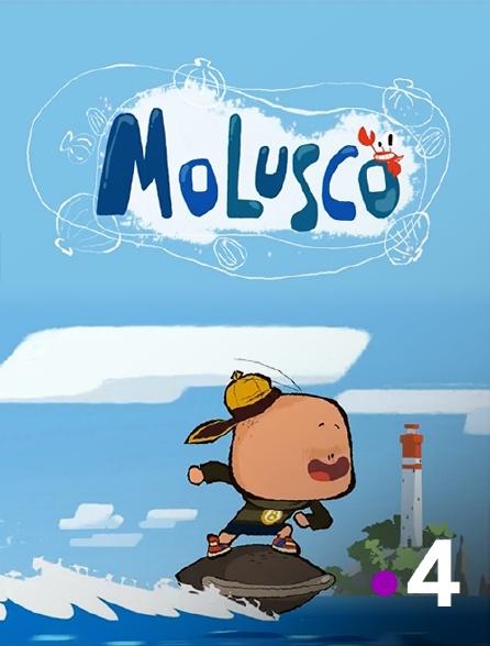 France 4 - Molusco