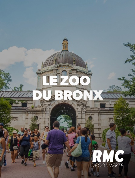 RMC Découverte - Le zoo du Bronx