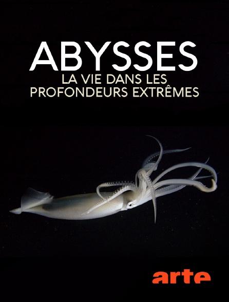 Arte - Abysses, la vie dans les profondeurs extrêmes