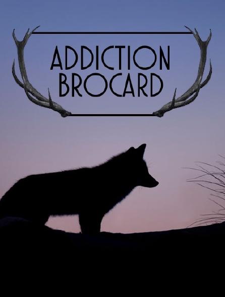 Addiction brocard