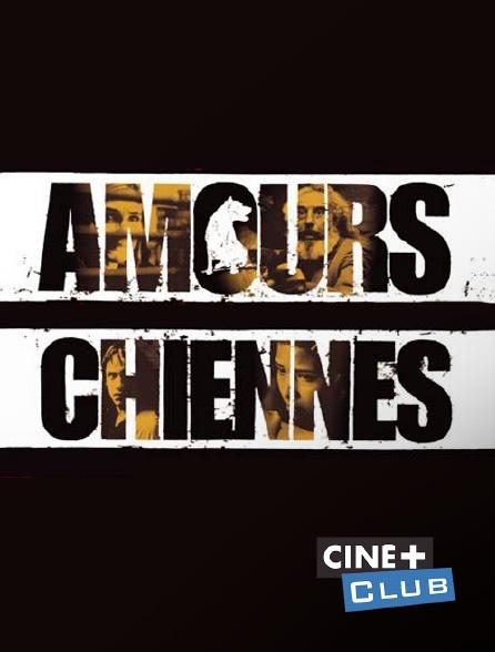Ciné+ Club - Amours chiennes