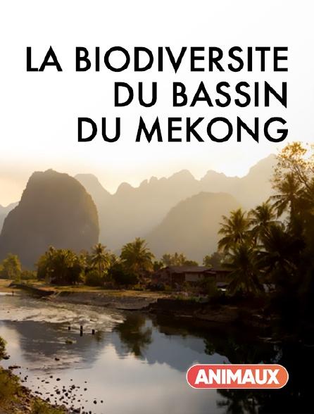 Animaux - La biodiversité du bassin du Mékong