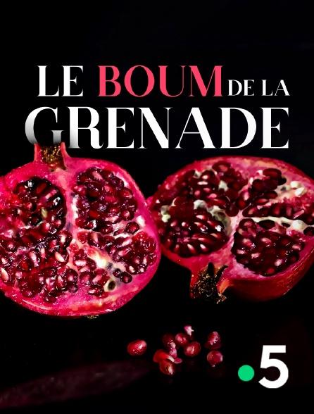 France 5 - Le boum de la grenade