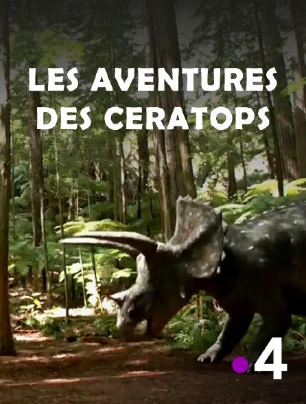 France 4 - Les aventures des Ceratops