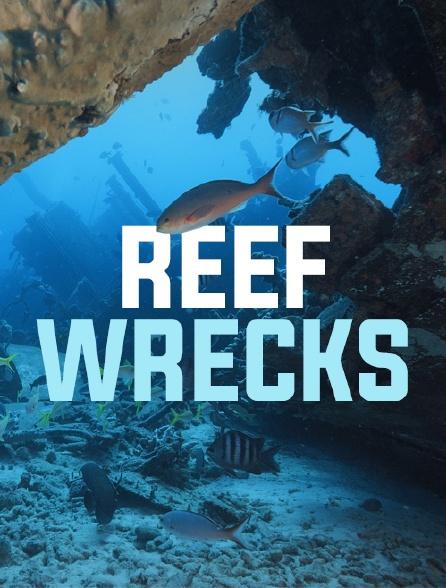 Epaves de récifs