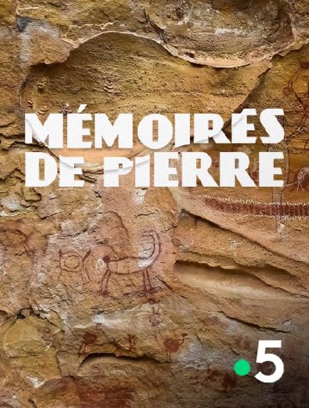 France 5 - Mémoires de pierre