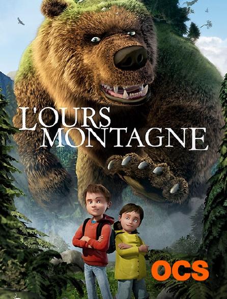OCS - L'ours montagne