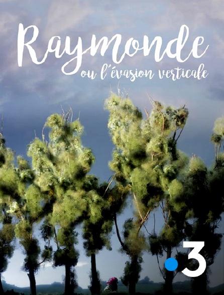 France 3 - Raymonde ou l'évasion verticale