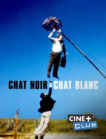 Ciné+ Club - Chat noir, chat blanc