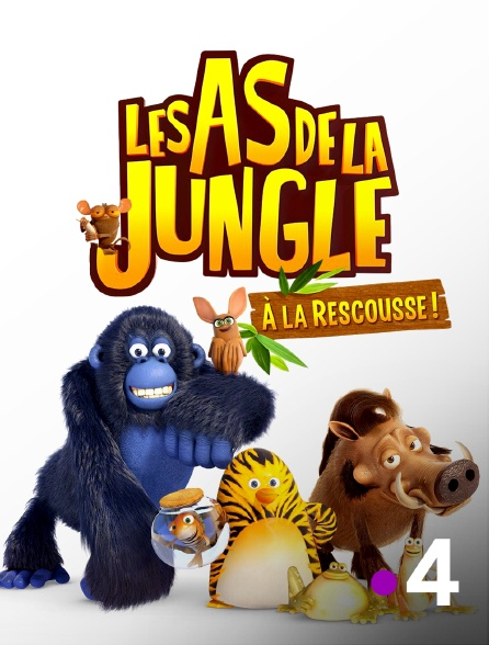 France 4 - Les as de la jungle à la rescousse