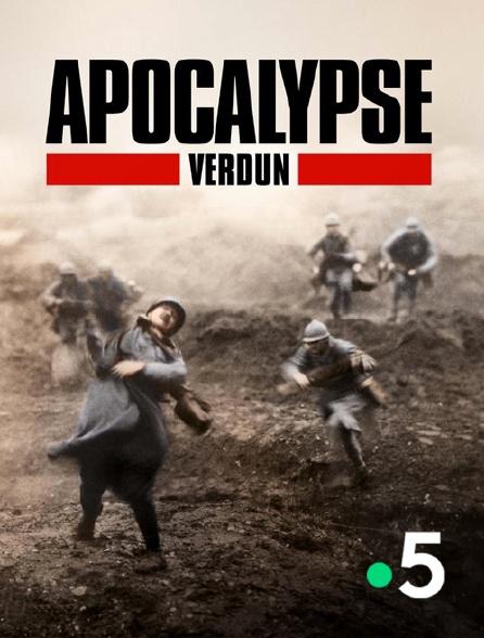 France 5 - Apocalypse Verdun