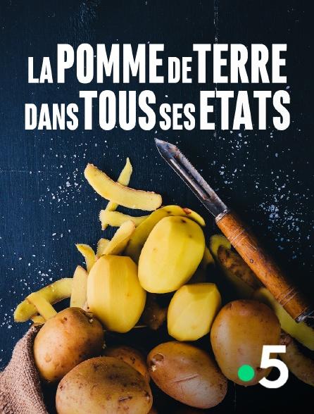France 5 - La pomme de terre dans tous ses états