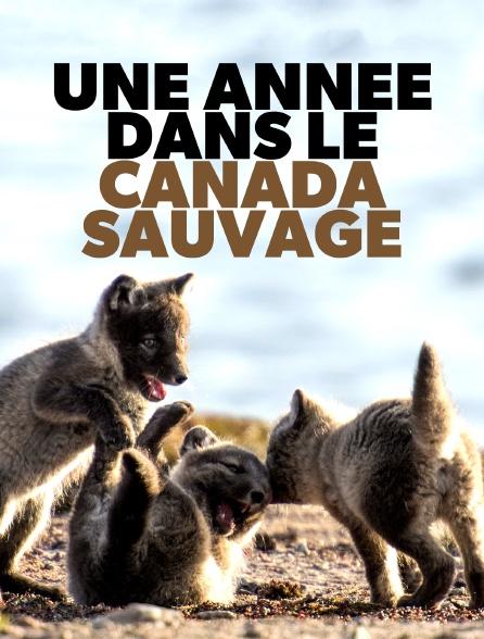 Une année dans le Canada sauvage