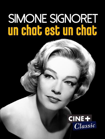 Ciné+ Classic - Simone Signoret, un chat est un chat