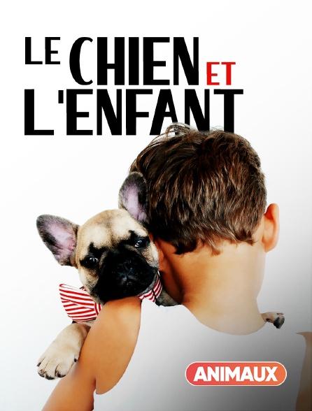 Animaux - Le chien et l'enfant